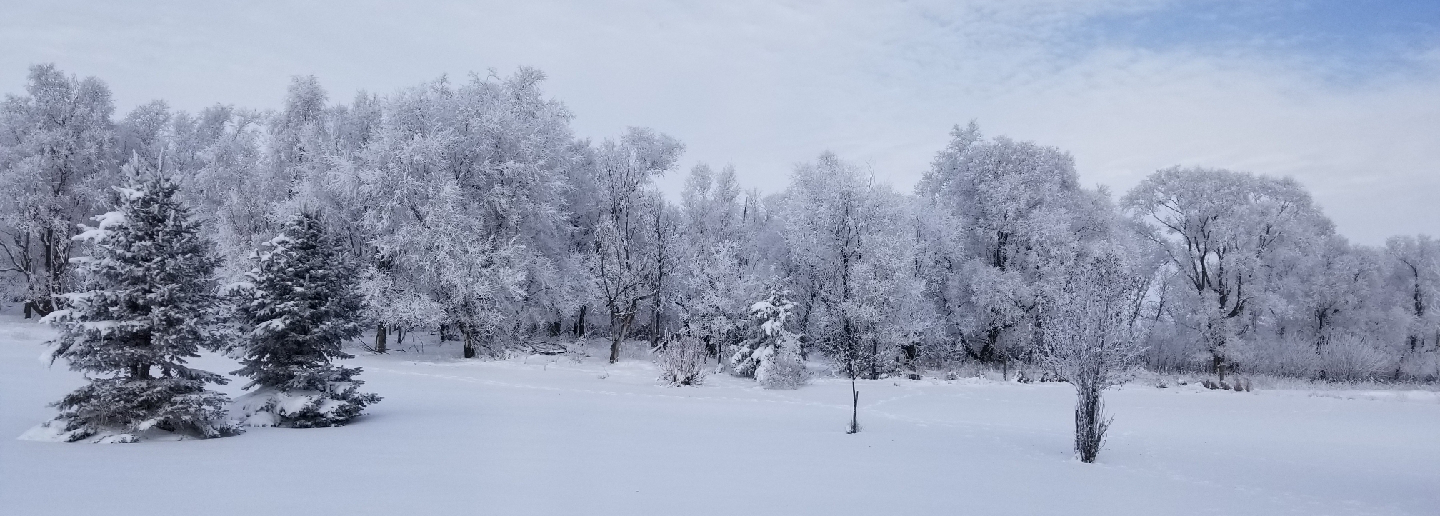Winter in South Dakota